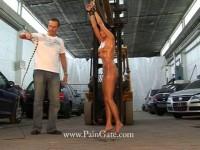 Forklift Bullwhipping