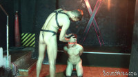Blindfolded And Roped Boy Lured Into Gay BDSM Play (english, play, cumshot, vid, master)