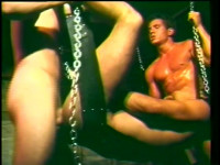 The Best Of Joey Stefano.