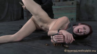Three Little Sluts - Hailey Young