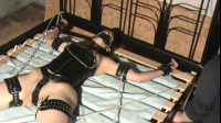 Domination Of A Ponygirl - Bound ponygirl