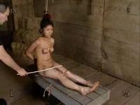 No Escape Angelica, 731 - InSex