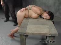 Expanding Her Horizons - Kitty Langdon