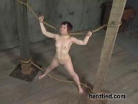 Hard Tied Videos 3