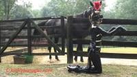 KPG - Ponygirl Barn - 2