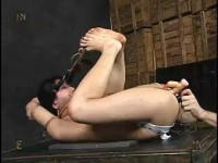 Vip Full Collection Insex 2004 - 50 clips!