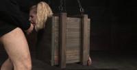 Tiny Blonde Odette Bound Inside A Box