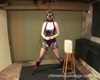 Leather head harness securely (2013)