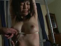 Japanese amateurs pd-039