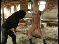 BDSM and Boys 6
