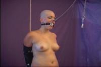 Shaved Bald Slave