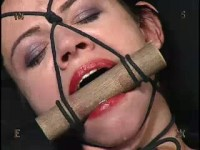 Insex – Spanky (2004)