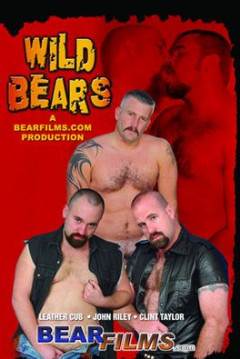 Wild Bears gay video