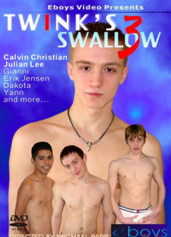 Twinks Swallow Vol. 3 .