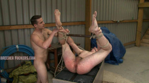 Bound spread-eagle and cock clamped, arse flogged