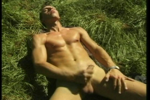 Cock From the Bushes