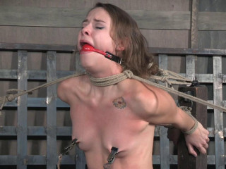 Kittle Caned