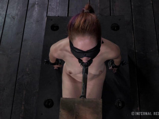 Calico Lane - For Bondage's Sake - BDSM, Humiliation, Torment