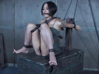 Chain Fuckpuppet (25 Nov 2016)