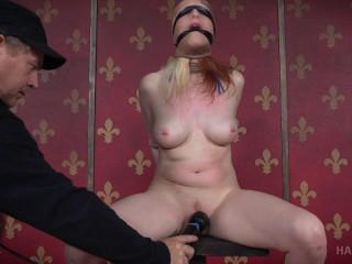 Half & Half - BDSM, Humiliation, Torment