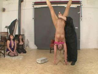 Studio of Torture