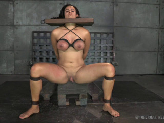 IR - Brat Training: It's Not About You - Penny Barber - November 07, 2014 - HD