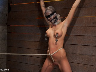 Scene 4/4 of Nov's show: Cruel gag, disruptive orgasms, a crotchrope from hell! Full suffering!