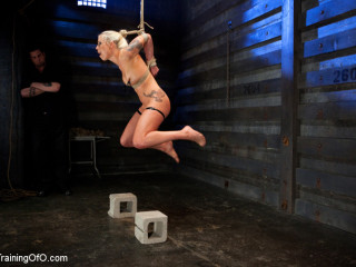Lorelei Lee Day 4 - Facing Fears, Taking Violent Torture, and Extraordinary Climaxes