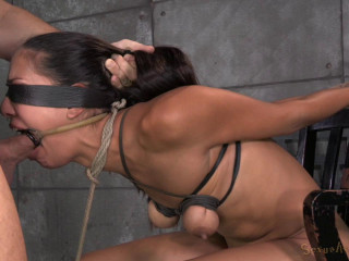 Lyla Storm - Matt Williams - Jerk Hit