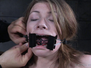 Harley Ace Bind-her Clips (2015)
