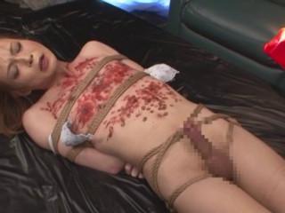 Intrinsic TS Restrain bondage Restraint Torment Serizawa TS Extraordinary Torment
