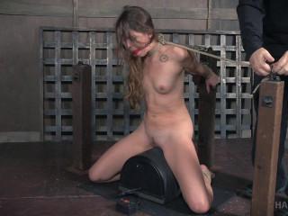 Kittle Flogged