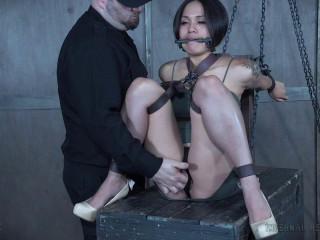 Chain Ragdoll