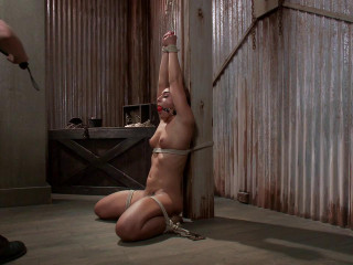 Fresh Meat Mischa Brooks Maestro Mischa Brooks - BDSM, Humiliation, Torment HD 720p