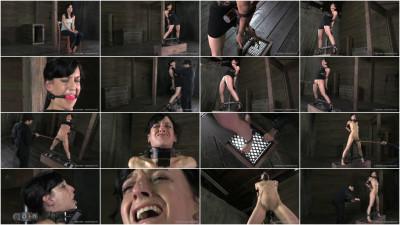 Elise Graves - Scream Test, Part 1