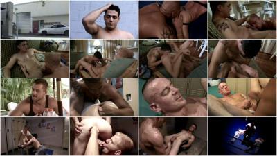 Betrayed (2008, Entertainment)