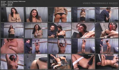 Secretary Bondage 3 - Elektra