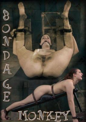 bdsm Endza-Bondage Monkey Part 3