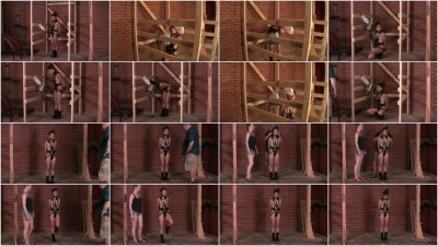 bdsm Bailey Pony Girl Test Part Four