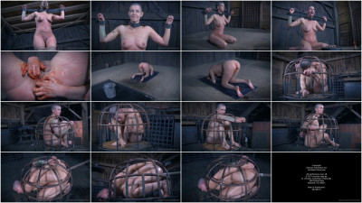 bdsm The Extended Feed of Miss Dupree, Part 4