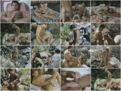 Fantasies (1988)