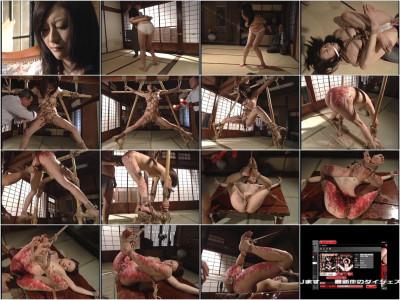 Kyoka Aikawa wife Yonaki vol.2 [ADV-R0311]