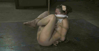 bdsm Fit To Be Tied-Bonnie Day