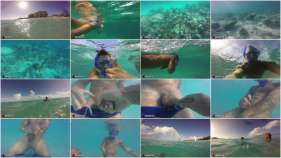 A Caribbean Underwater Adventure
