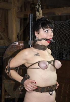 BDSM horror story