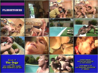 muscular film young studs scenes (Fleshtones).