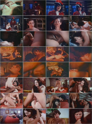 Annette Haven Collection(1970/DVD5)