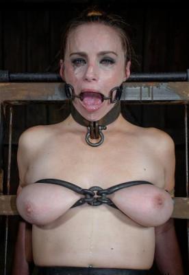 Bella's BDSM Day