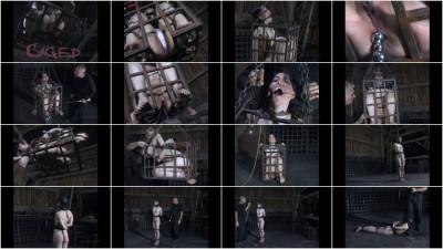 Felonie-Caged BONUS