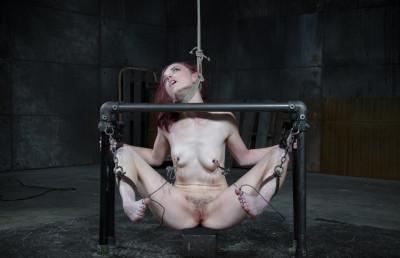 bdsm Sexy Ivy Addams-Pit Pull